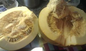 The start of the pumpkin preparation